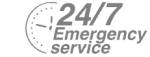 24/7 Emergency Service Pest Control in Southfleet, Meopham, DA13. Call Now! 020 8166 9746