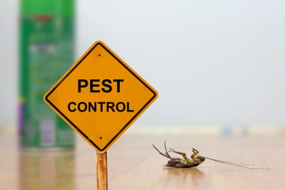 Pest Contol in Southfleet, Meopham, DA13. Call Now 020 8166 9746